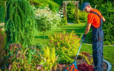 Perchè scegliere il corso di formazione di manutentore del verde?